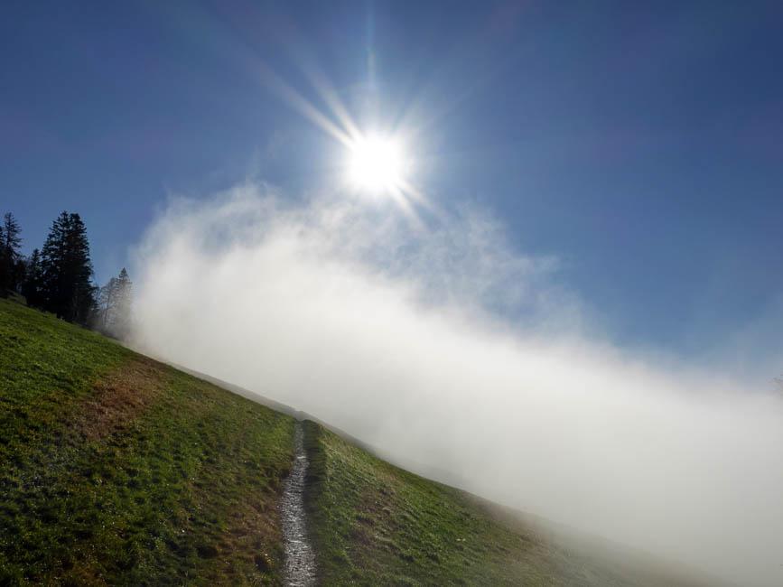 Faszination Nebel-217-Bearbeitet_newsletter