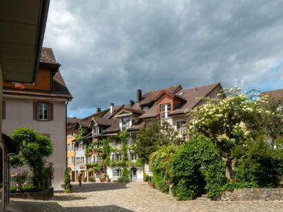 010 Bremgarten-191