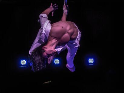 Circus Royale-117
