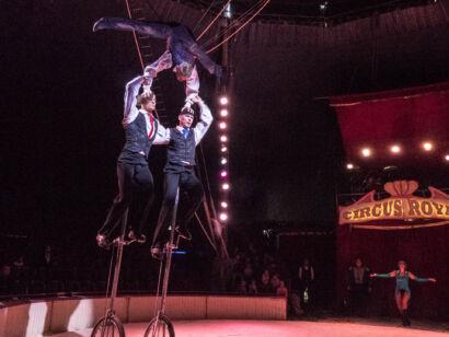 Circus Royale-132