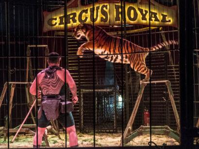 Circus Royale-134