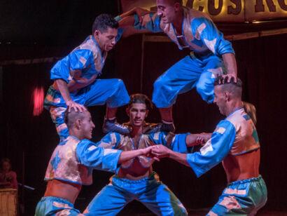Circus Royale-144