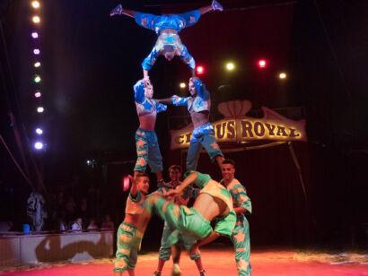 Circus Royale-146