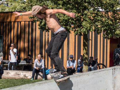 skateboard-2890
