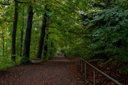001 Herbstregen-138