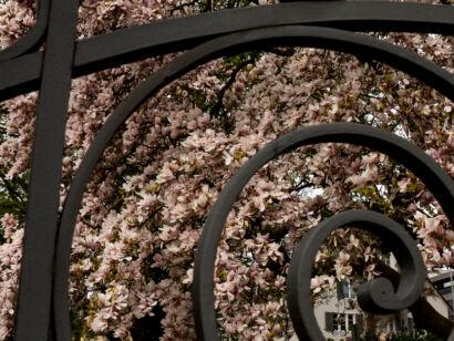Stadtgärten-119-2