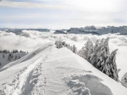 Winterimpressionen Jan 2018-190
